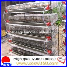 De codorniz 2015 jaulas para kenya/de malla de alambre de codorniz jaula de granja