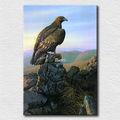 vendita calda foto in cina di tela a buon mercato falco stand pittura