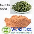 La naturaleza extracto de té verde 30%- 95% en polvo té polifenoles( egcg) galato de epigalocatequina