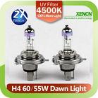 Long Lifetime New XENCN H4 12V 60/55W P43t 4500K Dawn Light Replace Upgrade X-treme Vision Car Headlights Halogen Auto Bulbs