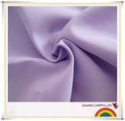 Polyester pongee/210T Pongee/Waterproof fabric