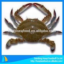 best frozen swimming crabs seafood
