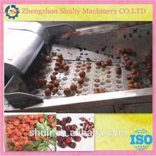 cherry pit remove machine 0086-13703827012