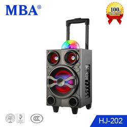 Hot sale 8 inch midrange speaker with bluetooth,wireless microphone,fm radio,lighting
