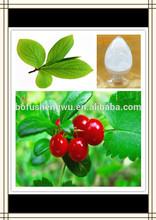 bearberry leaf extract arbutin,alpha arbutin,alpha arbutin cream