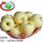 Custard Golden Apple Fruit