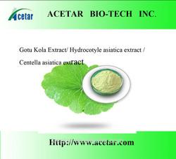 Gotu Kola P.E. Total triterpenes > 80% -Iso Haccp, Kosher , Halal cert. factory