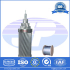 Direct Manufacturer for Stranded Galvanized Steel Wire