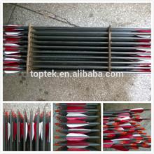 True Vanes Target Arrows with Logo, Archery Target Arrows, Carbon Arrows with True Feather
