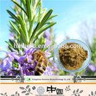 100% natural plant extract,natural medicinal herbs Rosmarinic acid (melissa officinalis extract)