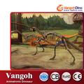 Vgs63-educational esqueleto de dinossauro escavação kit