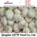 novas culturas agrícolas produto china alho desidratado