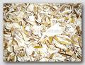 hava kurutulmuş mantar mantarlı dilimlenmiş satılık