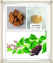 polygonum multiflorum thunb,polygonum multiflorum thunb extract