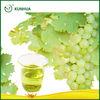 Bulk 100% Purity Grape Seed Oil