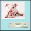 Food safety Rapid testing Rac Ractopamine Rapid Test Kit(animal urine)