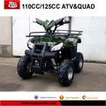 110CC ATV for child