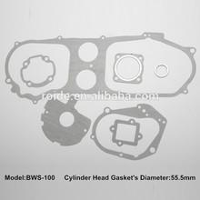 BWS 100 for overhauling gasket