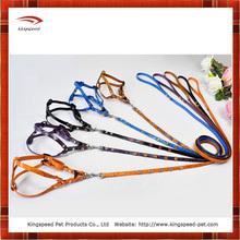 Smart pattern dog leash/pet leash