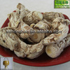 Pure Natural 0.6% ligustilides dong quai extract in stock