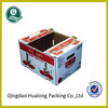 Fresh cherry tomato packing boxes