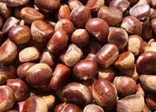 Pura y natural preservado orgánica seca de la castaña en china, Toda la venta