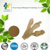 Best selling natural angelica extract Ligustilide 1%