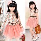 Free sample cinderella dresses for girls dress girl girl wholesale child garment