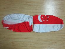 Singapore Flag National Day Car Side Mirror Cover