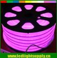 127v ac. rose, violet. flexible néons conduit signe 12x26mm 80leds/m pour les magasins