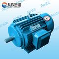 De alta calidad! Y2 serie asea asíncrono trifásico eléctrico motor de 5 hp