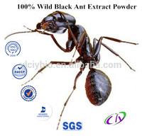 100% Wild black ant powder