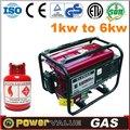 Gas natural y glp gnl 2014 gnc tipo elemax 2.8kw 2.8 comprimido kva generador de gas natural( zh3500- 1cnem)