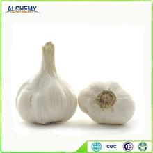 Chinese fresh garlic with good price
