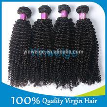 Top fashion hair 24 inch brazilian kinky hairpiece