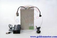 LiFePO4 Lithium battery, Frog Type, Water bottle type. 48V/72V 10AH/20AH/30AH / 100AH/200AH available