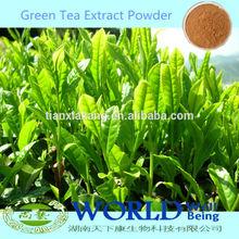 100% Natural China Organic Zenergreen Super China Green Tea Extract 98% Tea Polyphenols Powder/Green Tea Powder
