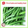 de haute qualité haricots verts surgelés en provenance de chine