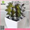 Mini artificial cactus bonsai with regular teeth for adomment
