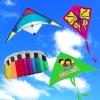 promotion kite/ stunt kite/ power kite/ diamond kite