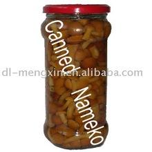 canned mushroom (canned food)