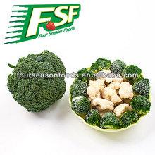 Grade A/B Frozen/IQF broccoli in 2014,chinese supplyier