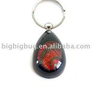 amber Key chain - K08 series - shell jewelry