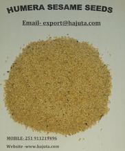 White Humera Sesame Seed
