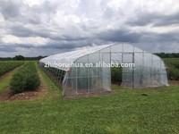 Tunnel Plastic Greenhouse