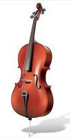 Good Price Student Cello