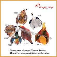 Pheasant Skin