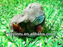 YINRU-Solar Rock Light with bird