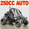 Automatic 250cc Off Road Go Kart
