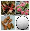 biochanin A powder 99%